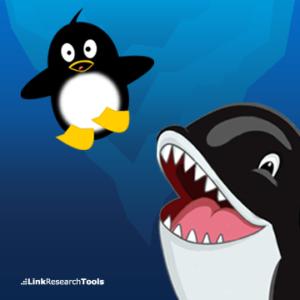 google-penguin-recovery